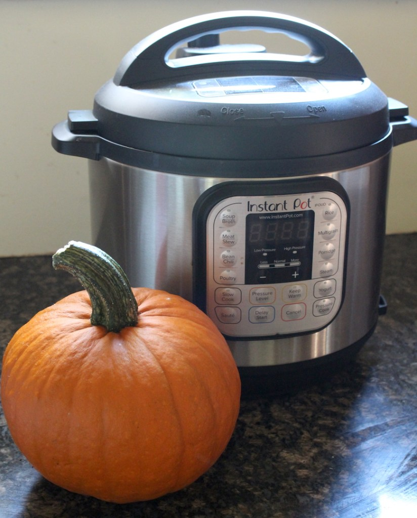 How to Cook a Pumpkin in an Instant Pot