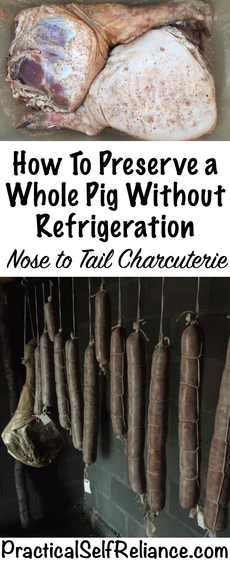 How To Preserve a Whole Pig Without Refrigeration - Nose to Tail Charcuterie