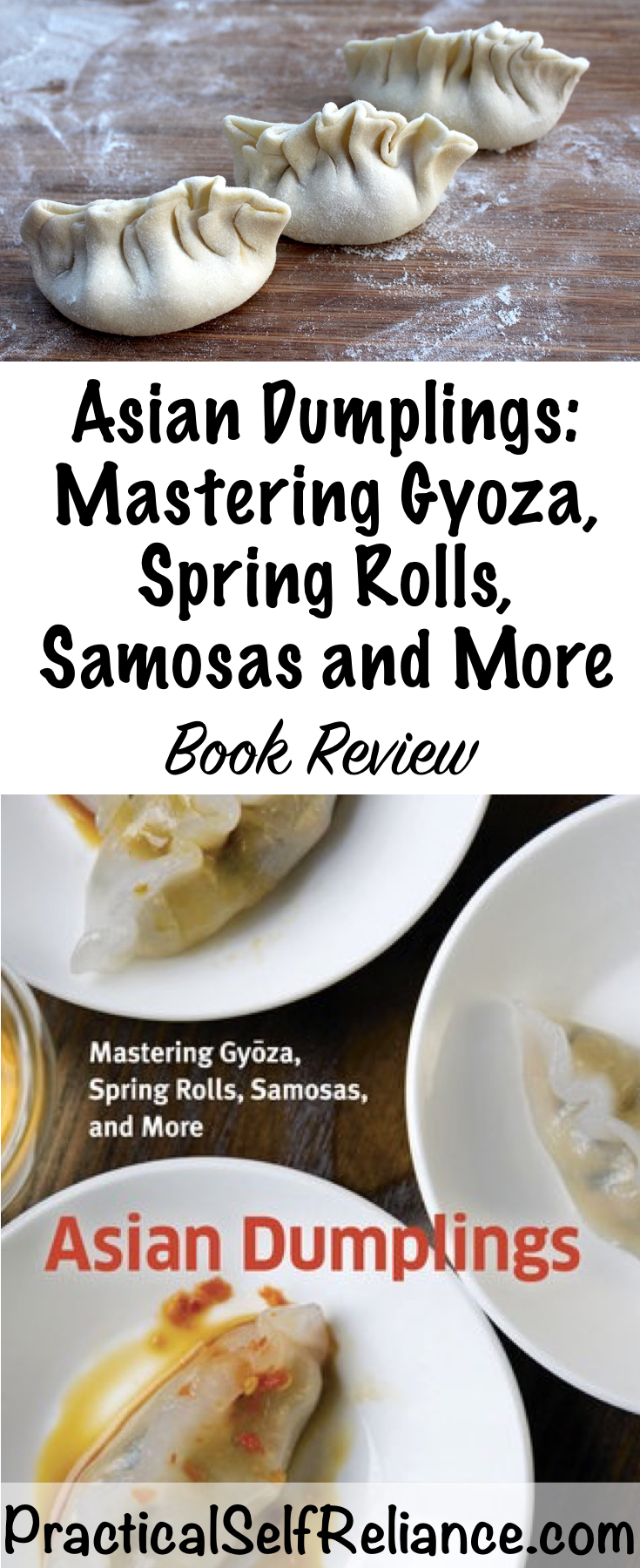 Asian Dumplings: Mastering Gyoza, Spring Rolls, Samosas and More - Book Review and Recipe