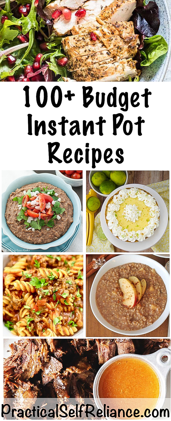 100+ Budget Instant Pot Recipes ~ Breakfast, Lunch & Dinner ~ Vegan, Keto, Paleo and More #instantpot #instantpotrecipe #instantpotrecipes #pressurecookerrecipes #quickmealideas #budgetmeals