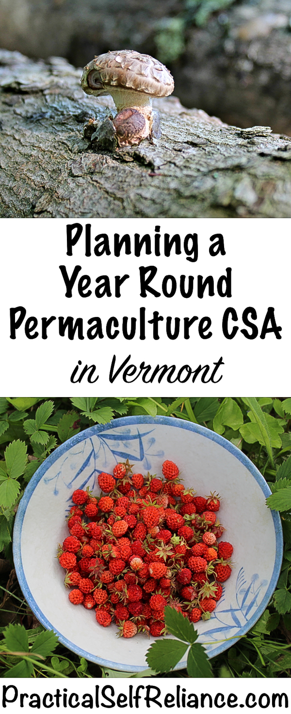Planning a Year Round Permaculture CSA in Vermont #permaculture #smallfarm #moneymakingideas #homesteadincome #csa #homesteading #homestead #selfreliant