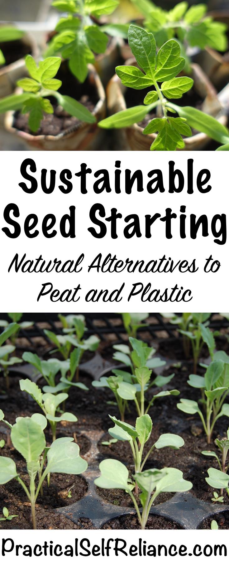 Sustainable Seed Starting Alternatives to Peat and Plastic #seedstarting #heirloom #grownfromseed #gardening #organicgardening #foodgardening #howtogrow #vegetablegardening #gardeningtips #homesteading #homestead #selfreliant #sustainability