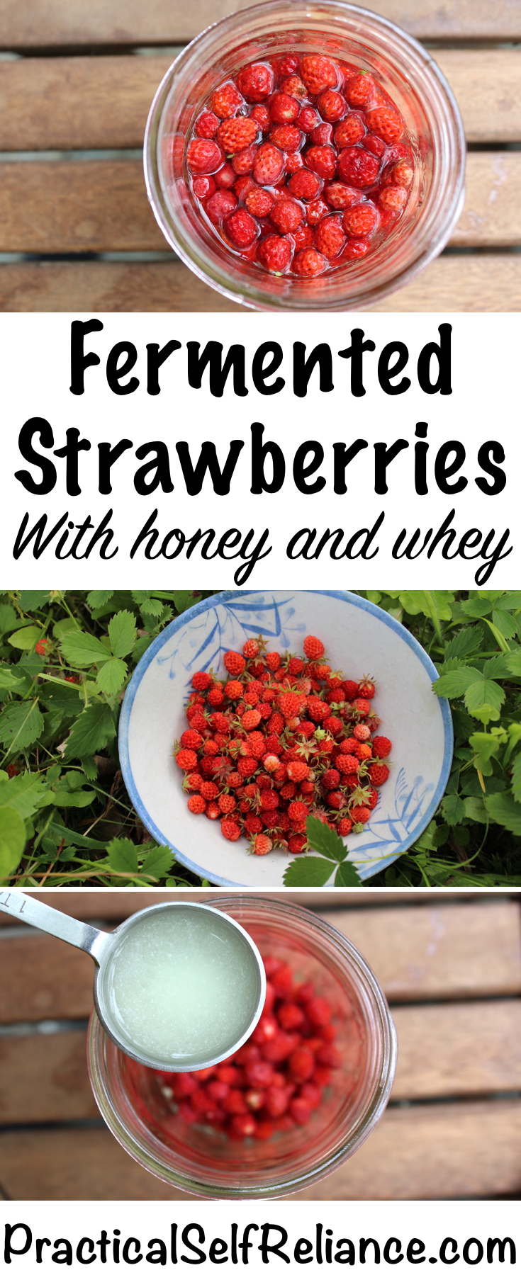 Fermented Strawberries with Honey and Whey ~ Lactofermented Berries