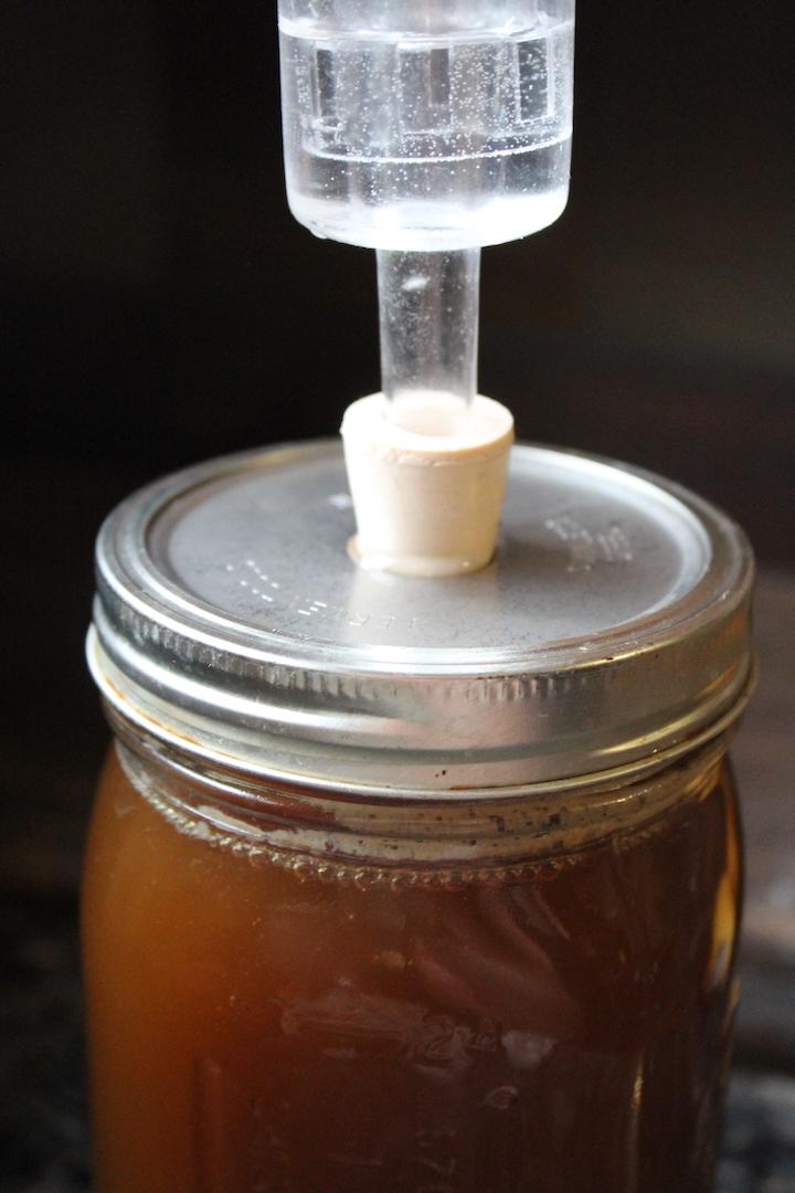 Fermenting birch syrup into birch beer