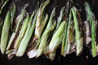 Fried Hostas Edible Perennial