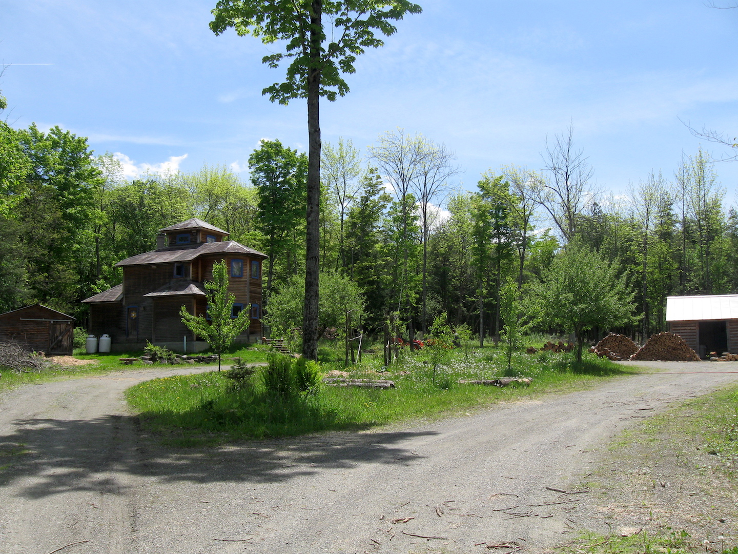 Homestead permaculture gardens