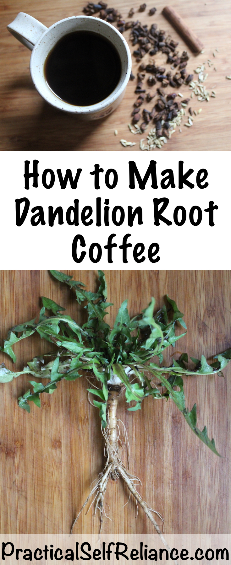 Roasted Dandelion Root Coffee with fennel and cinnamon