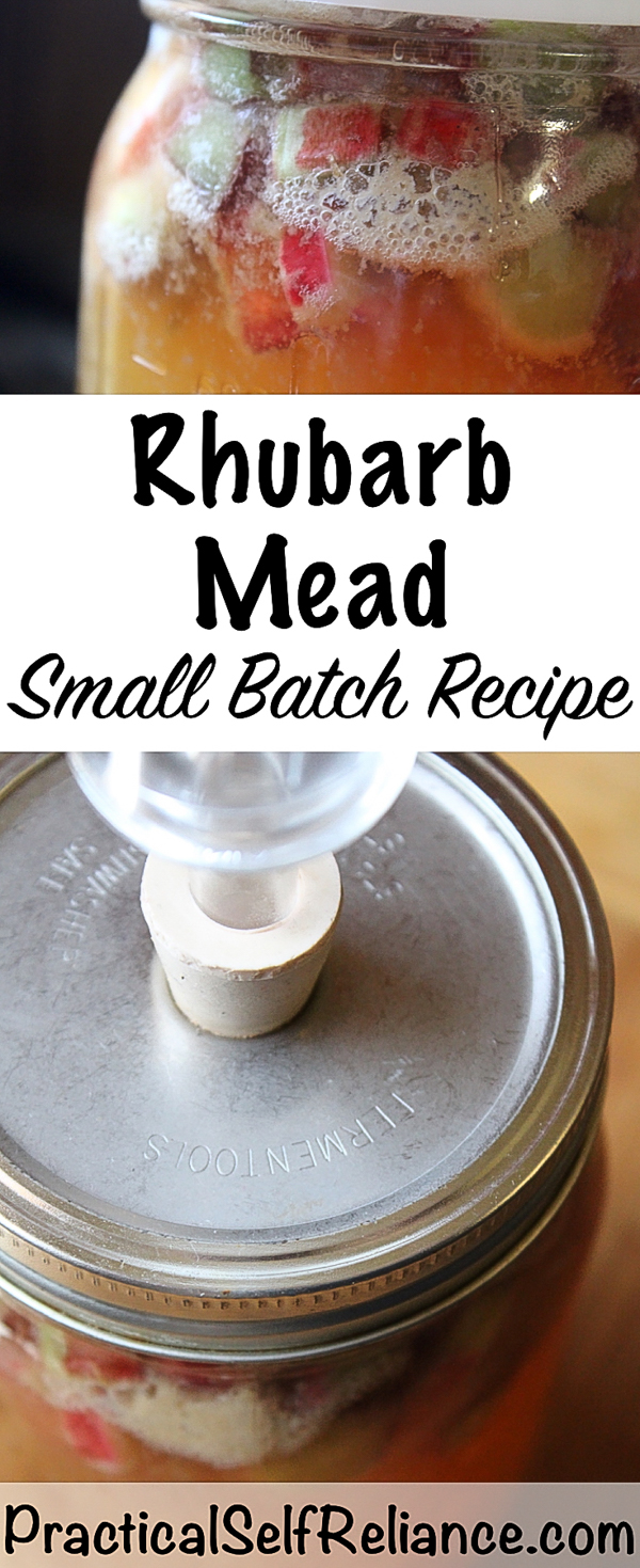 Rhubarb Mead ~ Small Batch Honey Wine Recipe #mead #meadrecipe #homebrew #honeywine #fermentation #fermenteddrinks #rhubarb #rhubarbrecipes