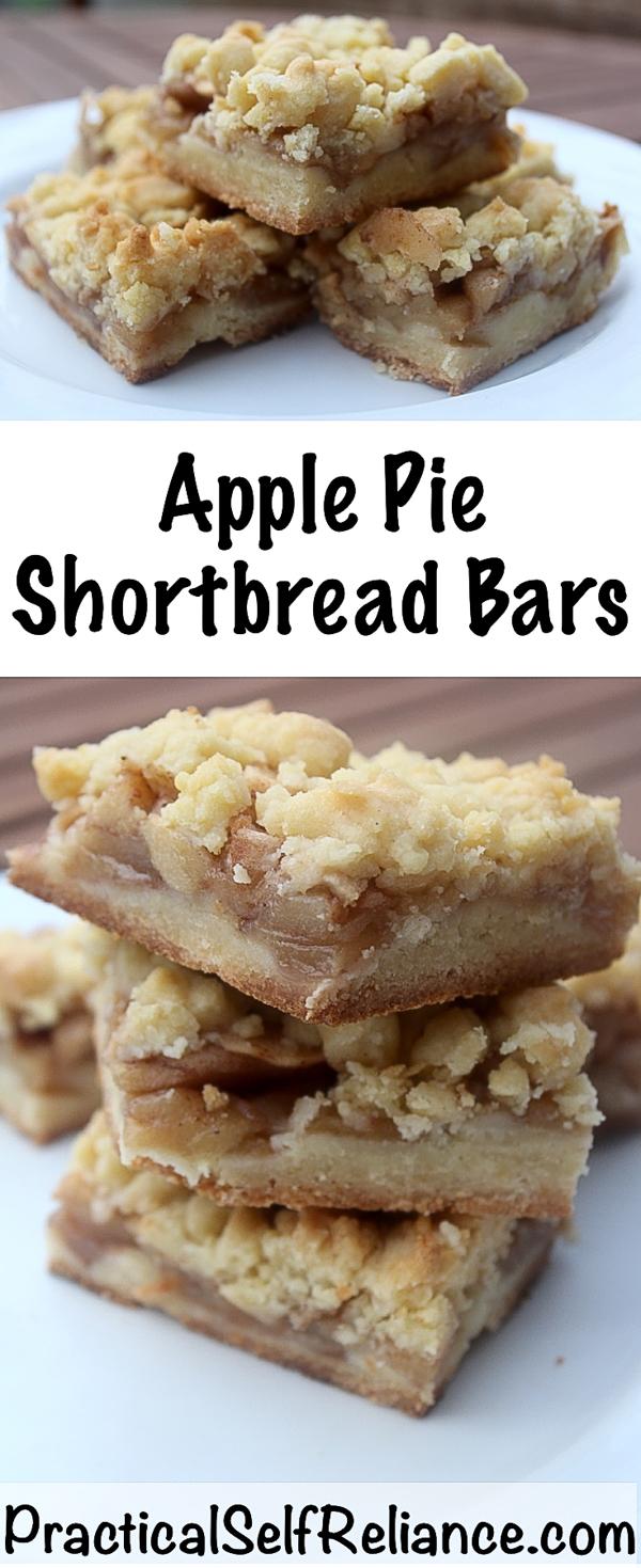 Apple Shortbread Squares Recipe #applerecipes #applepie #shortbread #dessertrecipes #bakingrecipes #fallrecipes