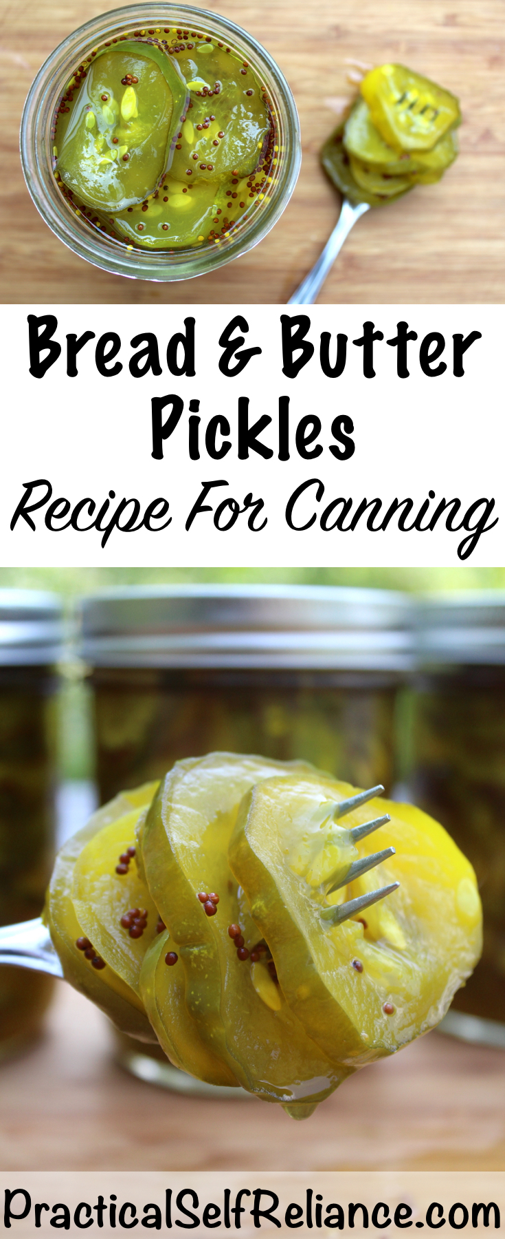 Bread and Butter Pickles Canning Recipe #pickles #recipe #howtomakepickles #canning #foodpreservation #preservingfood #homesteading #breadandbutterpickles