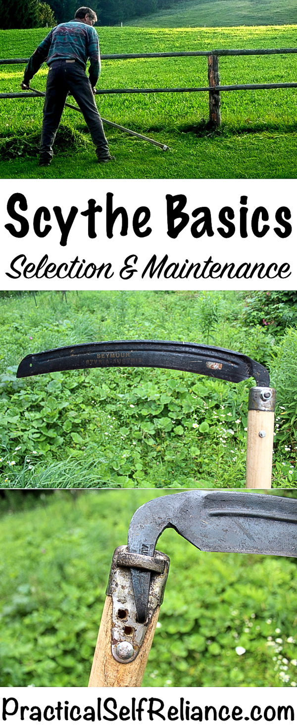 How to Select and Maintain a Scythe #scythe #traditionaltools #greenliving #weeds #homesteading #selfreliant #preparedness