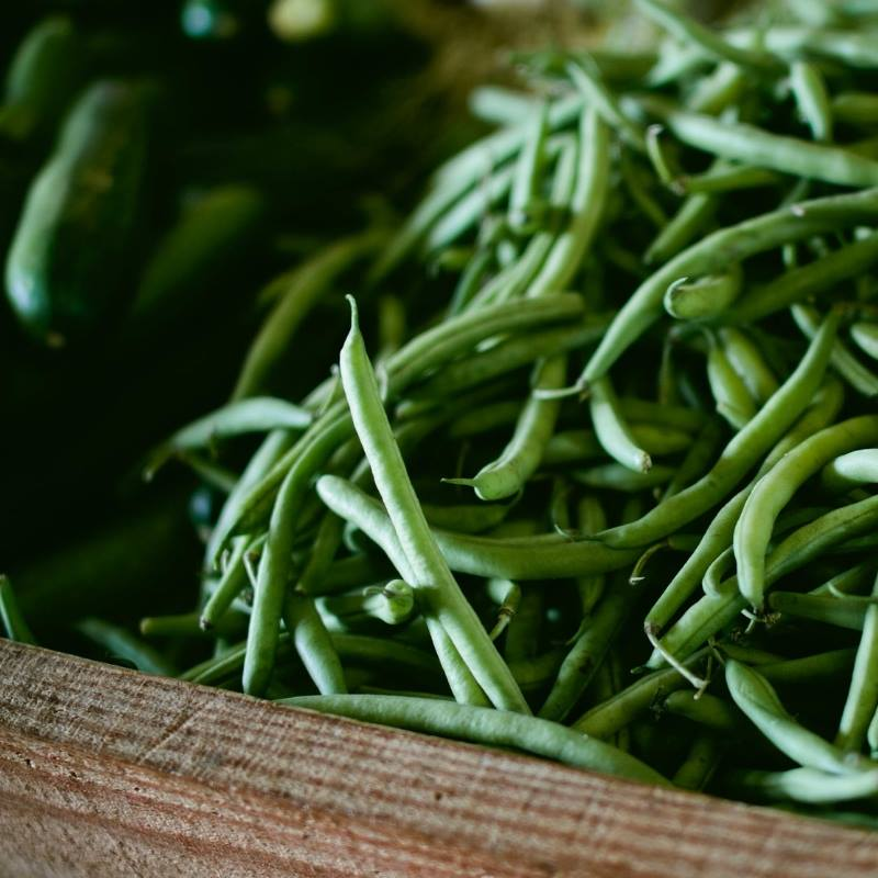 Green Beans dehydrate easily for winter soups