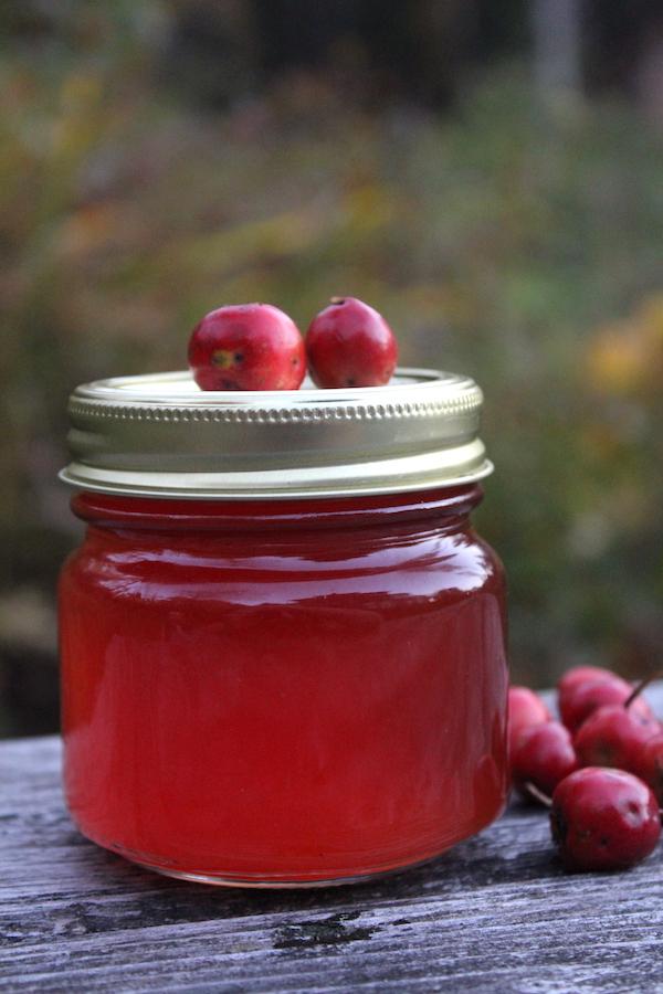 Hawthorn Jelly