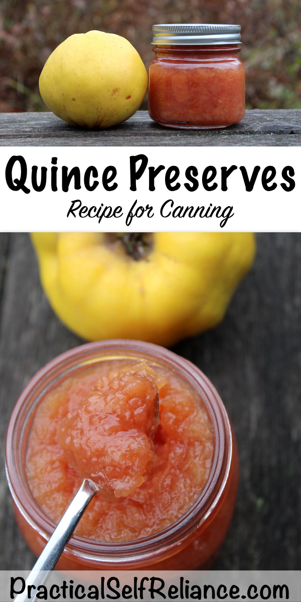 Quince Preserves Recipe for Canning