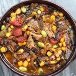 Traditional Brunswick Stew Recipe