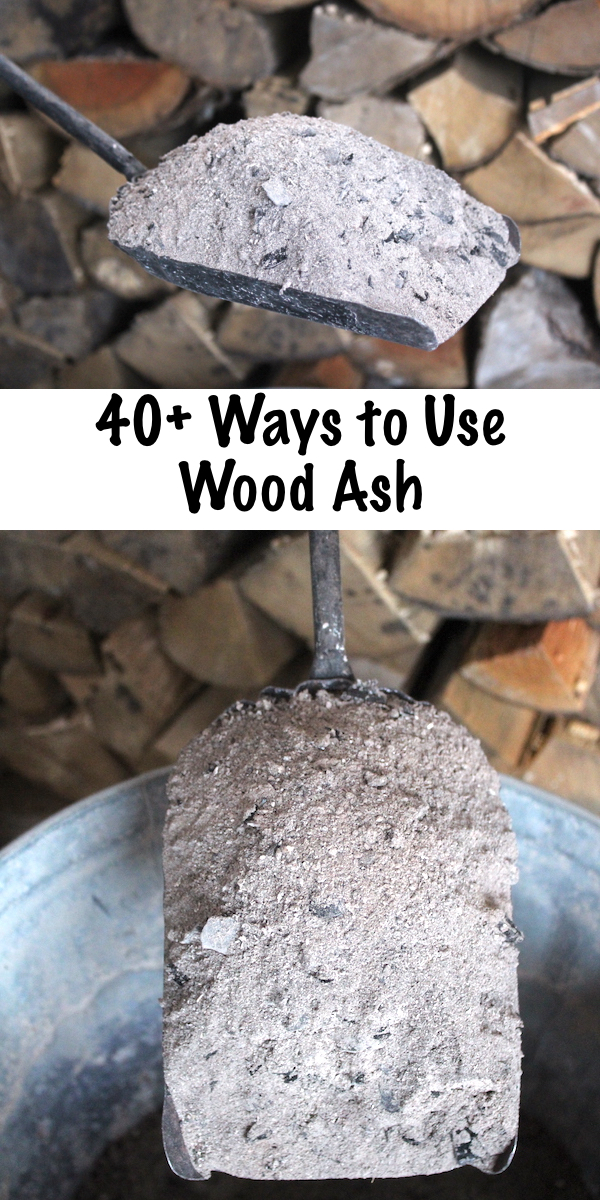 40+ Ways to Use Wood Ash from a Wood Burning Stove ~ Wood Ash Uses for Home, Garden and Survival ~Historical and Modern Uses for Wood Ash #woodash #uses #homsteading #selfsufficiency #survivalist #garden #foodpreservation
