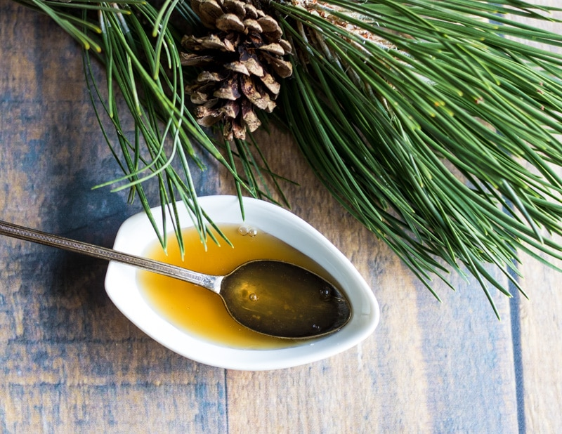 Pine Needle Cough Syrup from Grow Forage Cook Ferment