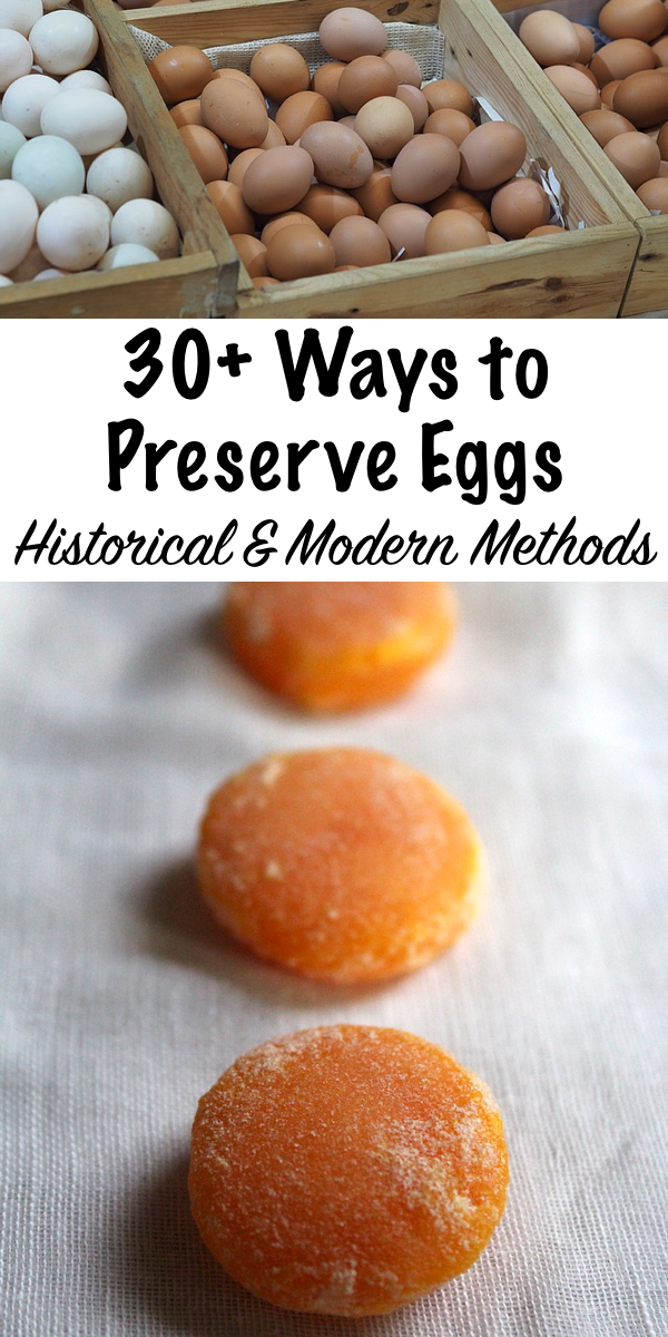 30+ Ways to Preserve Eggs ~ Historical and Modern Methods ~ Ways to Use Eggs ~ Historical Food Preservation #preserving #homesteading #recipes #homestead #backyardchickens #eggs #chickens #foodpreservation #selfsufficiency #prepper #shtf