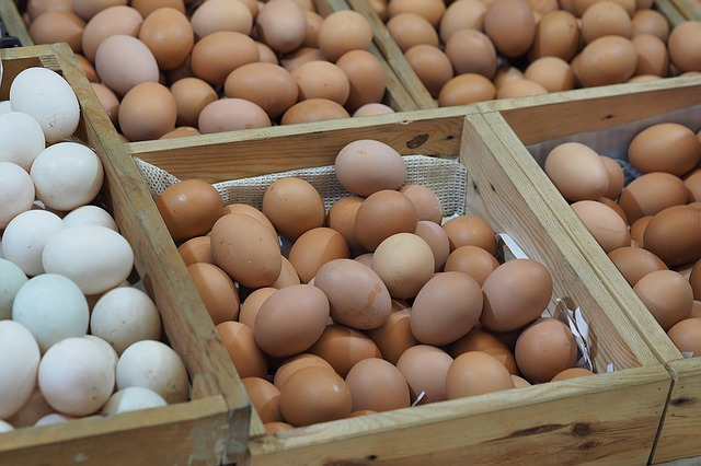 Crates of Eggs