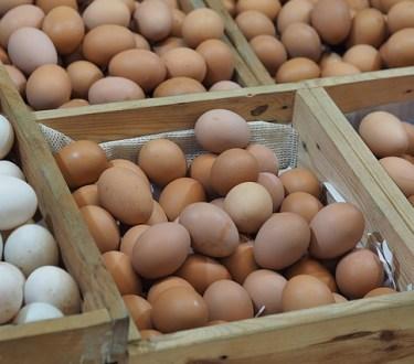 30+ Ways to Preserve Eggs
