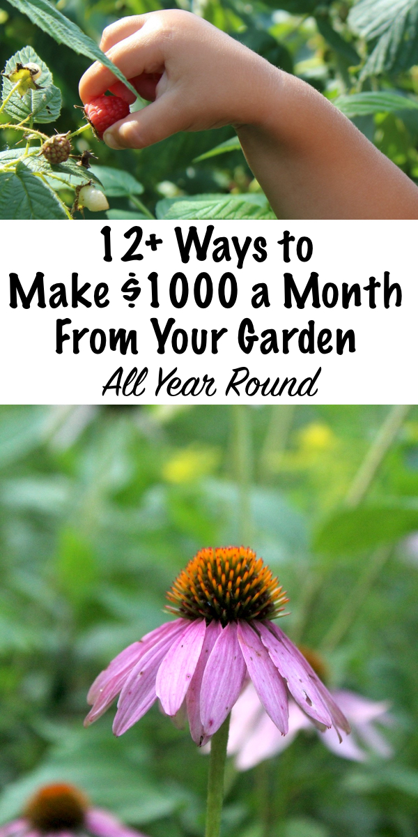 12+ Ways to Make an Extra $1000 a Month From Your Garden ~ Year Round! ~ A home garden is a great opportunity to earn a extra income from something you already love all year round. #workfromhome #garden #marketgarden #organicgarden #smallfarm #selfemployed