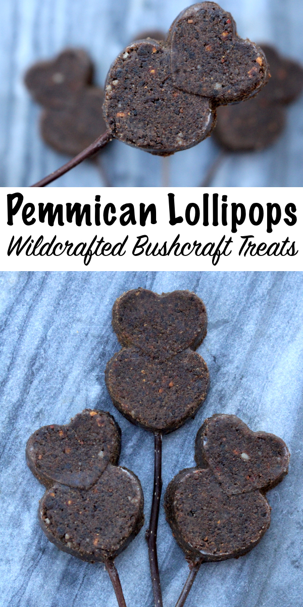 Wildcrafted Pemmican Lollipops ~ Real paleo treats! Pemmican is a traditional survival food made from dried meat and suet, but it can be crafted into a classy meat lollipop for your bushcraft sweetheart.