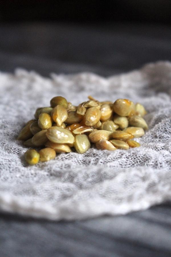 Citrus Seed Pectin for a natural jam thickener in kumquat jam