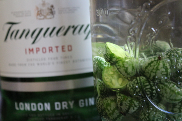 Homemade Cucamelon Gin infusing in a mason jar