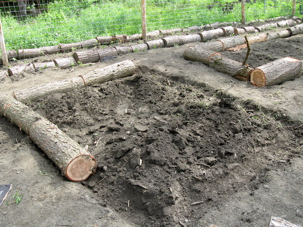 Building log raised beds