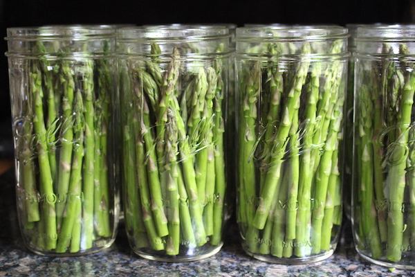 Canning Asparagus using the Raw Pack Method for Pressure Canning