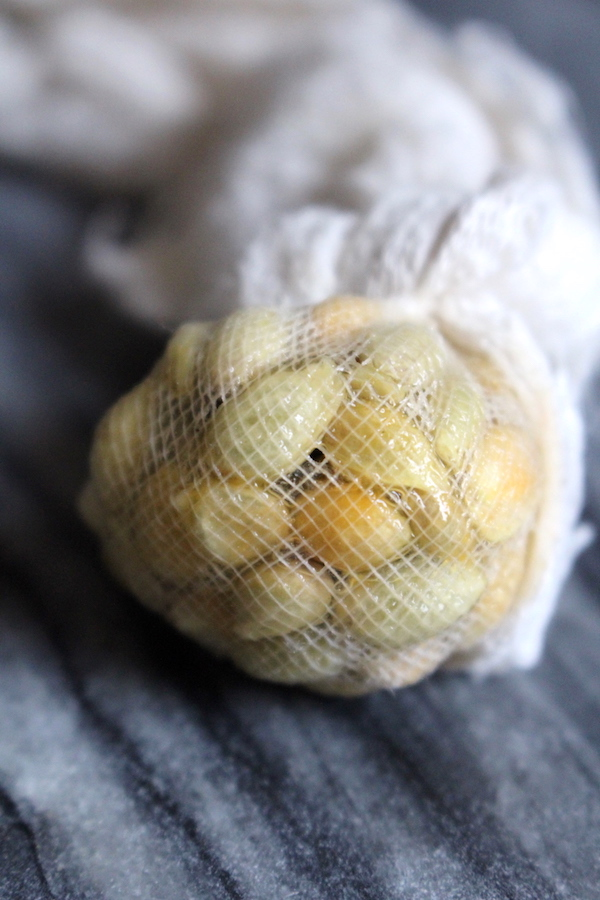 Citrus seeds in cheesecloth as a natural pectin for home canning