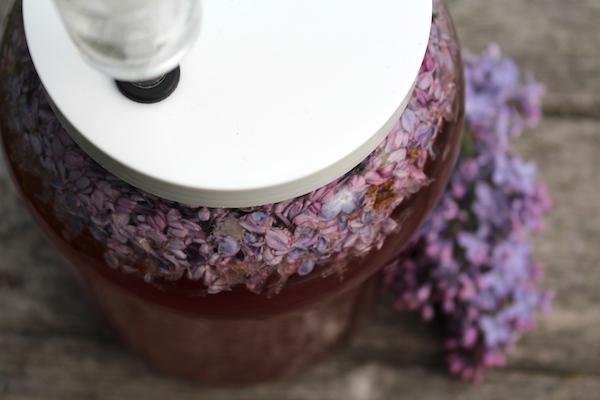 Lilac wine fermenting in a wide mouth fermentation vessel