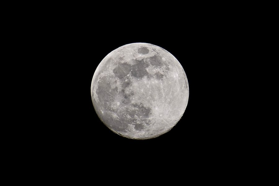 A full moon  ~ An indicator when you're gardening by the moon