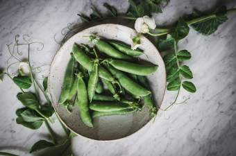 A bowl of fresh, home grown peas with vines and flowers