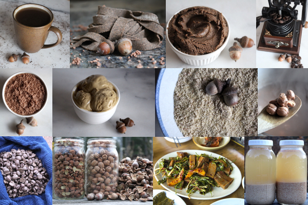 Eating Acorns ~ Acorn Recipes from Around the World