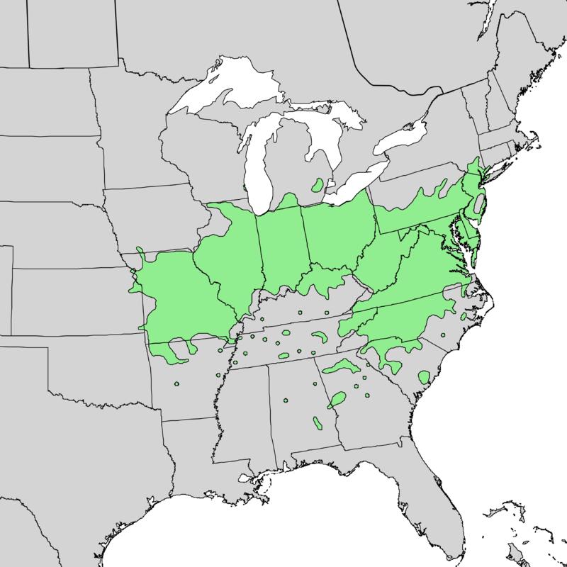Blackhaw (Viburnum prunifolium) range map