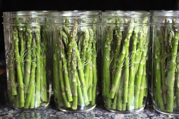 Impacchettare le lance di asparagi per i sottaceti fatti in casa