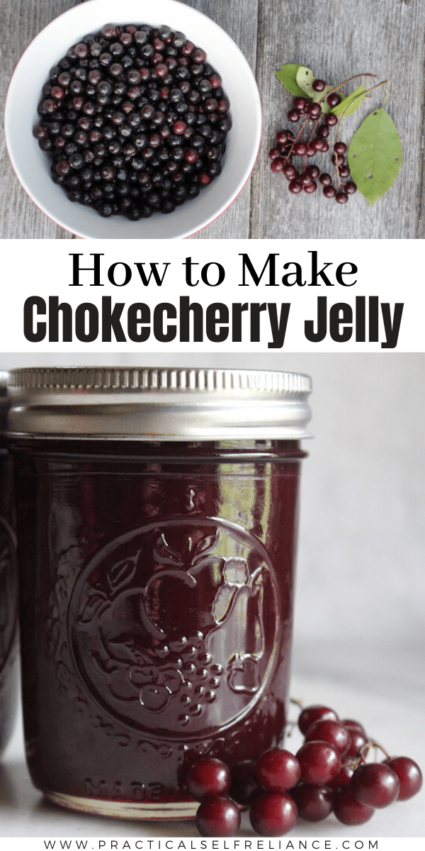 Chokecherry Jelly ~ Learn how to make your own jelly from wild foraged fruit with this easy chokecherry jelly recipe. All you really need is fresh ripe chokecherries and sugar, it's that simple. If you need a way to use chokecherries, be sure to try this easy chokecherry recipe.