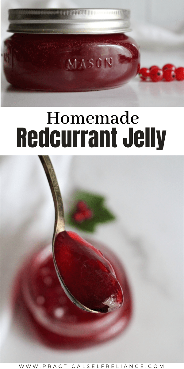 Homemade redcurrant jelly ~ This easy summer preserve comes together with just redcurrants and sugar. If you're looking for an easy redcurrant recipe, this is it!
