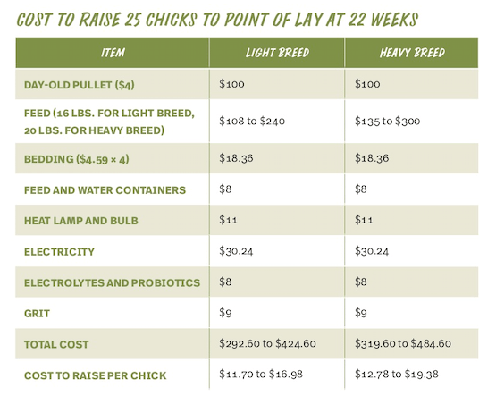 Cost to Raise 25 Chicks to Point of Lay at 22 Weeks