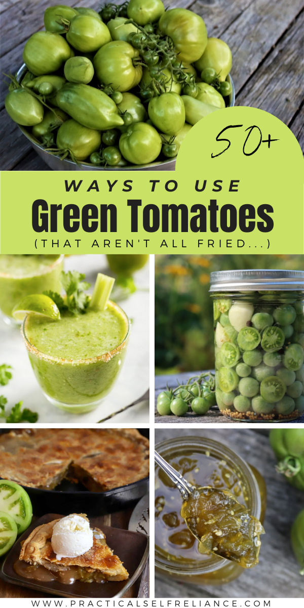 Green Tomato Recipes ~ Looking for ways to use green tomatoes? Here's every green tomato recipe you could possibly need, from ketchup to jam to cocktails, bread and chili. A few fried green tomato recipes too, just for good measure.