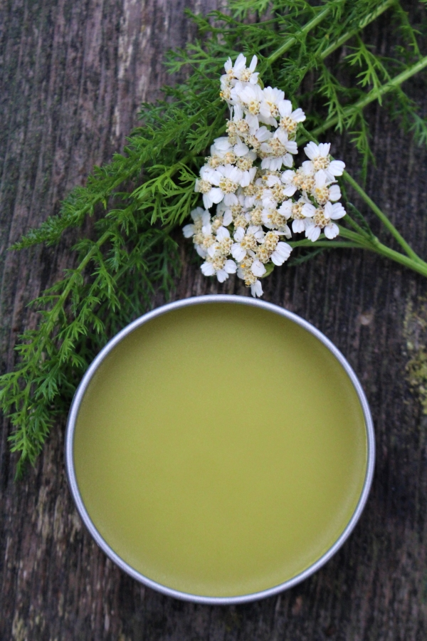 Homemade yarrow salve