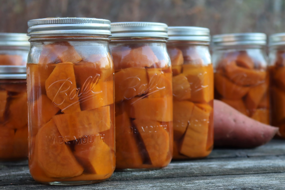 Canning Sweet Potatoes