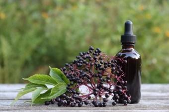 Homemade Elderberry Tincture