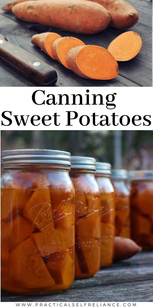 Canning Sweet Potatoes ~ Learn how to can sweet potatoes at home using a pressure canner