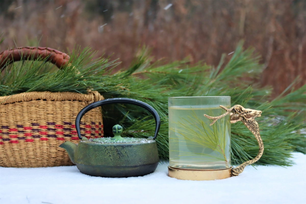Pine needle tea winter