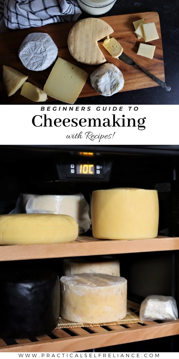 Beginners Guide to Cheesemaking