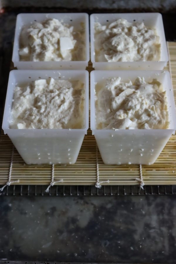 Curds draining in pyramid shaped cheese molds for surface ripened soft cheese