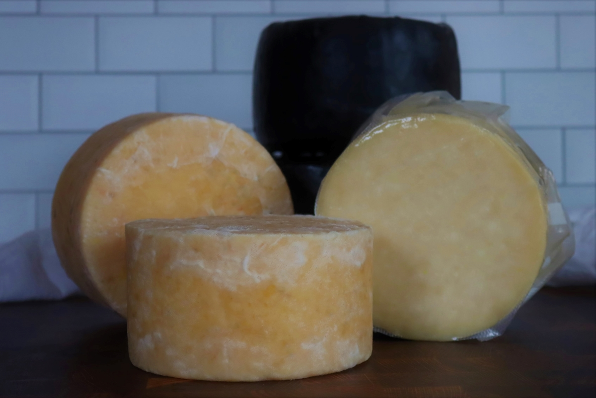 Five wheels of homemade cheddar cheese (around 20lbs total). Showing clothbound, waxed, and vacuum-sealed finishes.