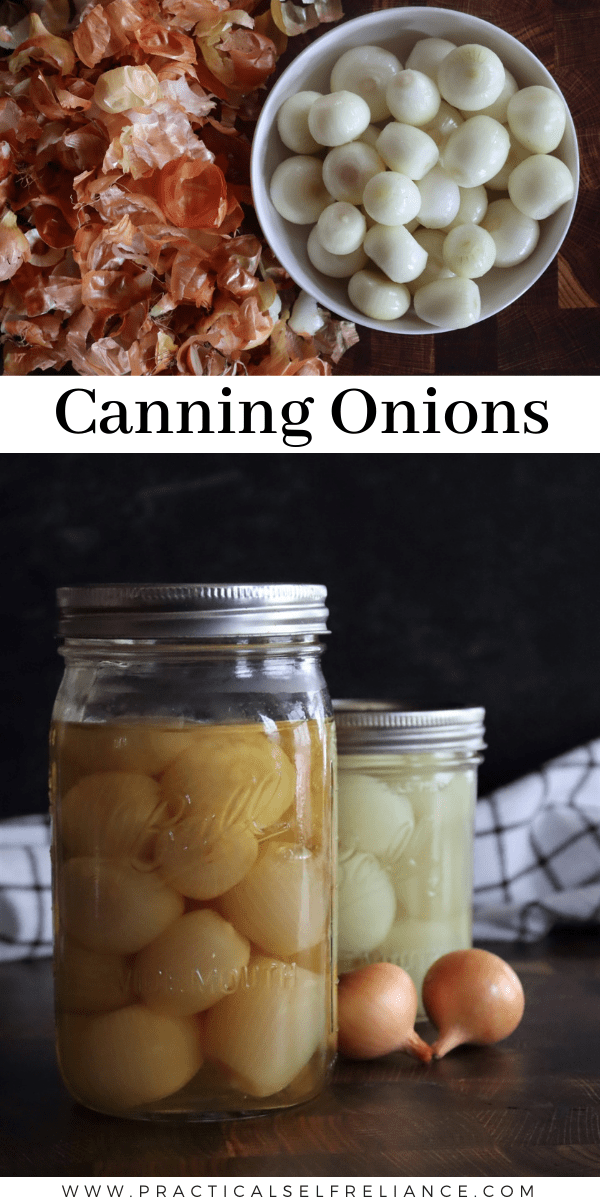 How to Can Onions ~ Learn the basics of pressure canning onions at home